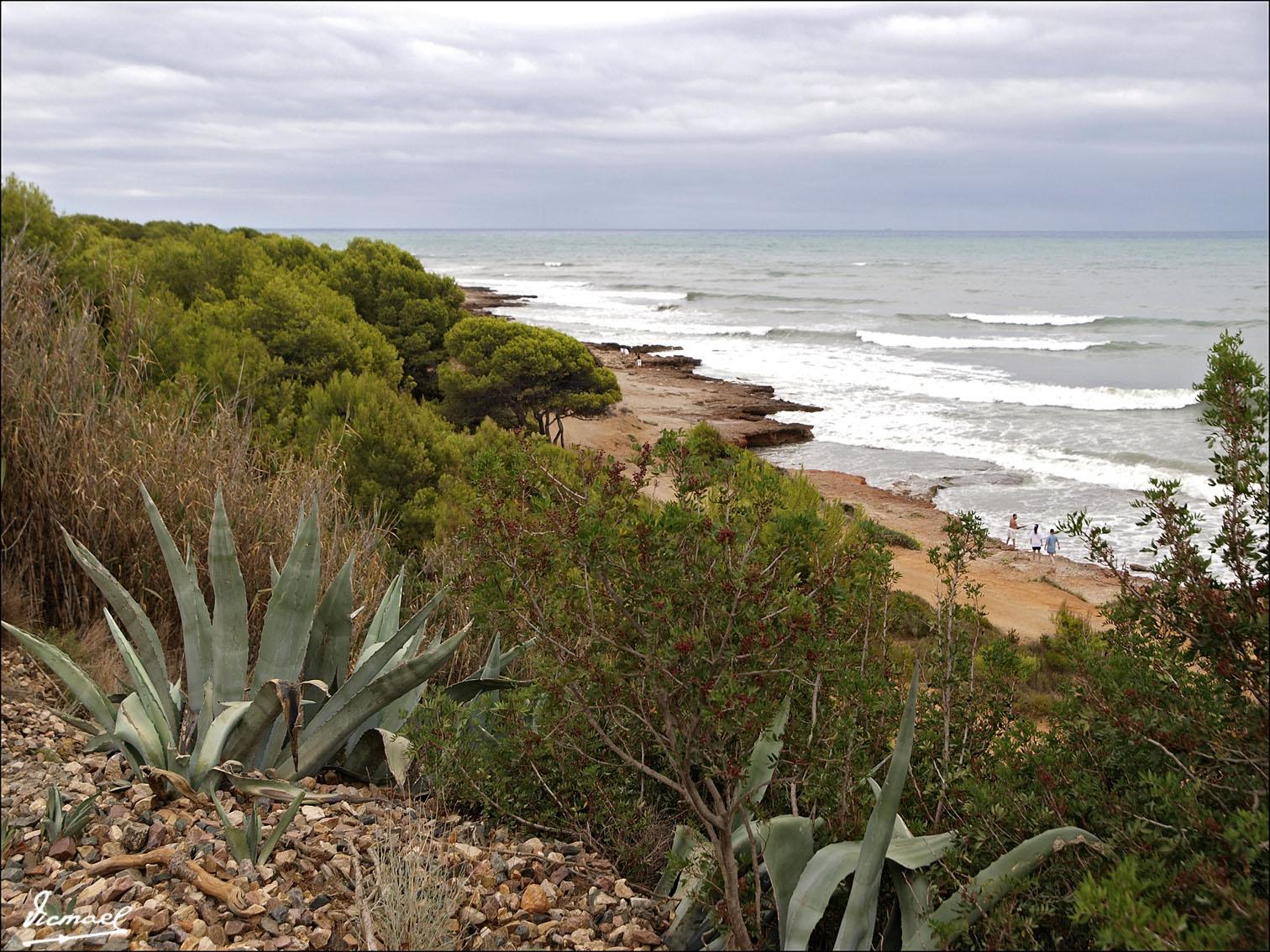 Foto playa Renega. 090905-65 CAMINO VERDE OROPESA-BENICASIN