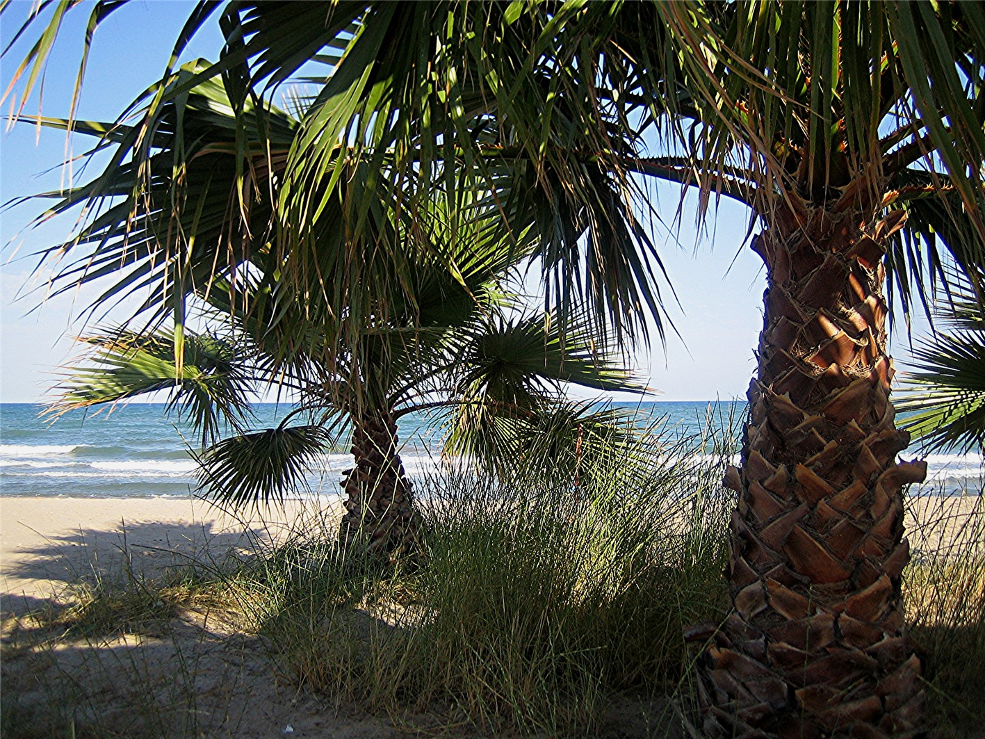 Foto playa Les Cases. Beach at Xilxes