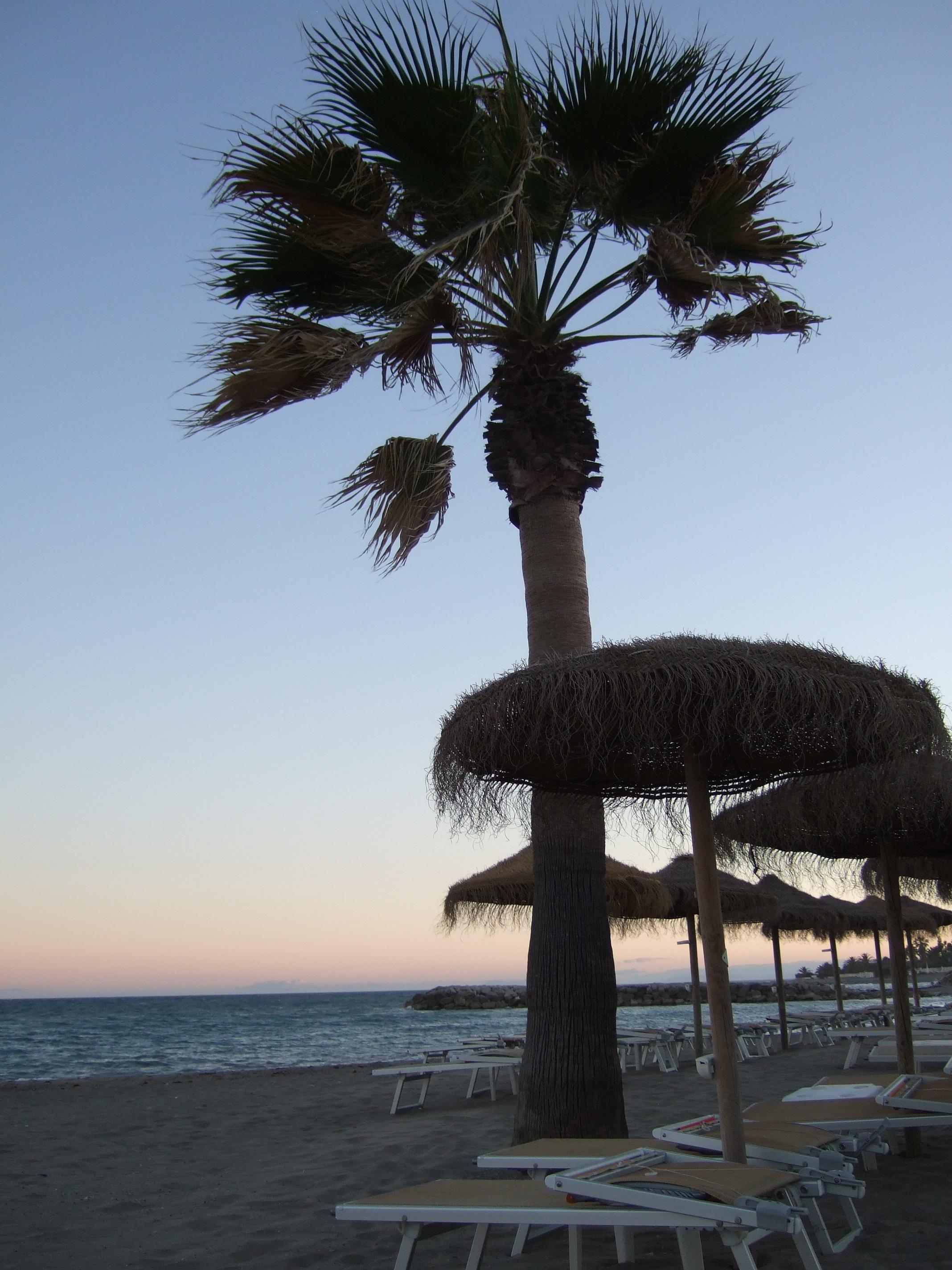 Foto playa Linda Vista. Puerto Banús
