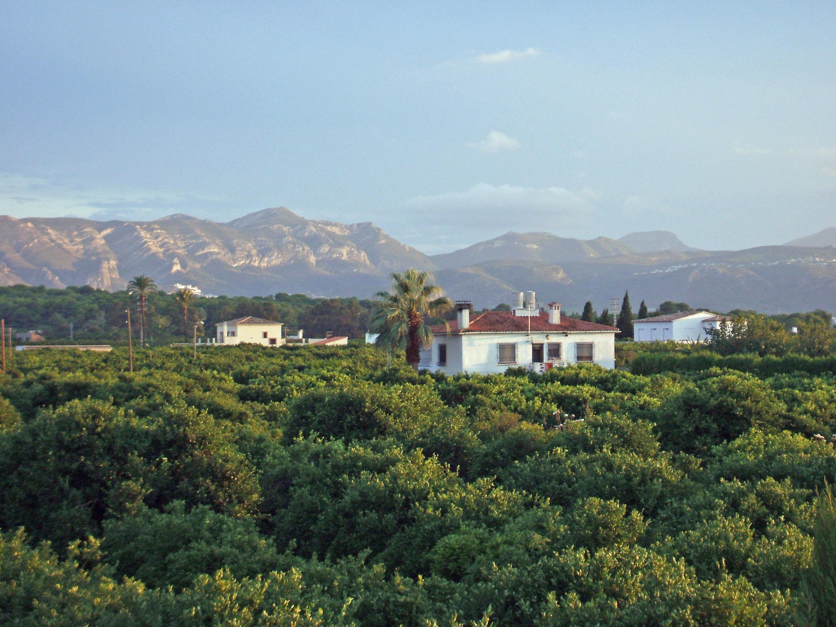 Foto playa Setla-Mirarrosa. Denia