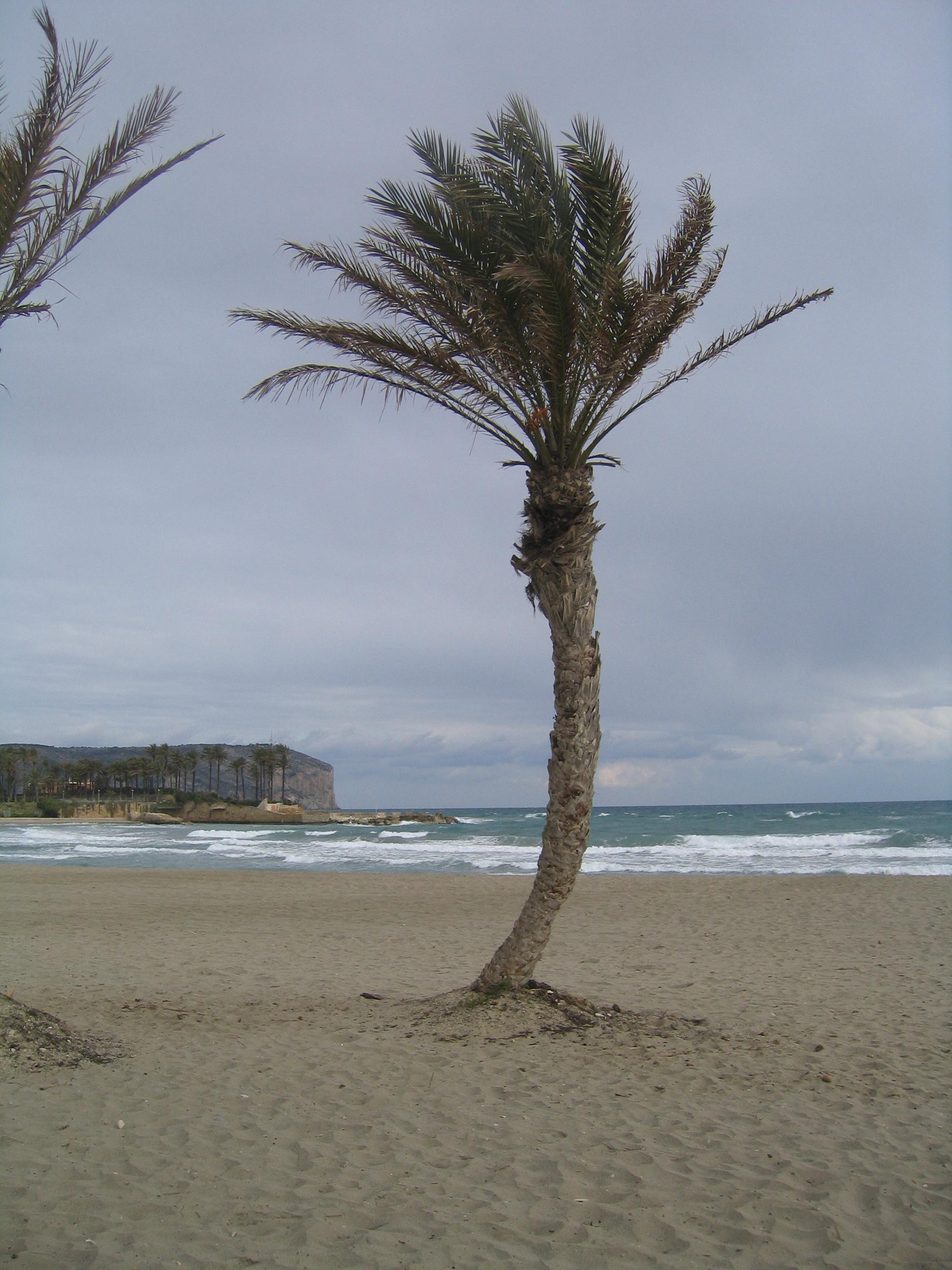 Playa Segundo Montañar