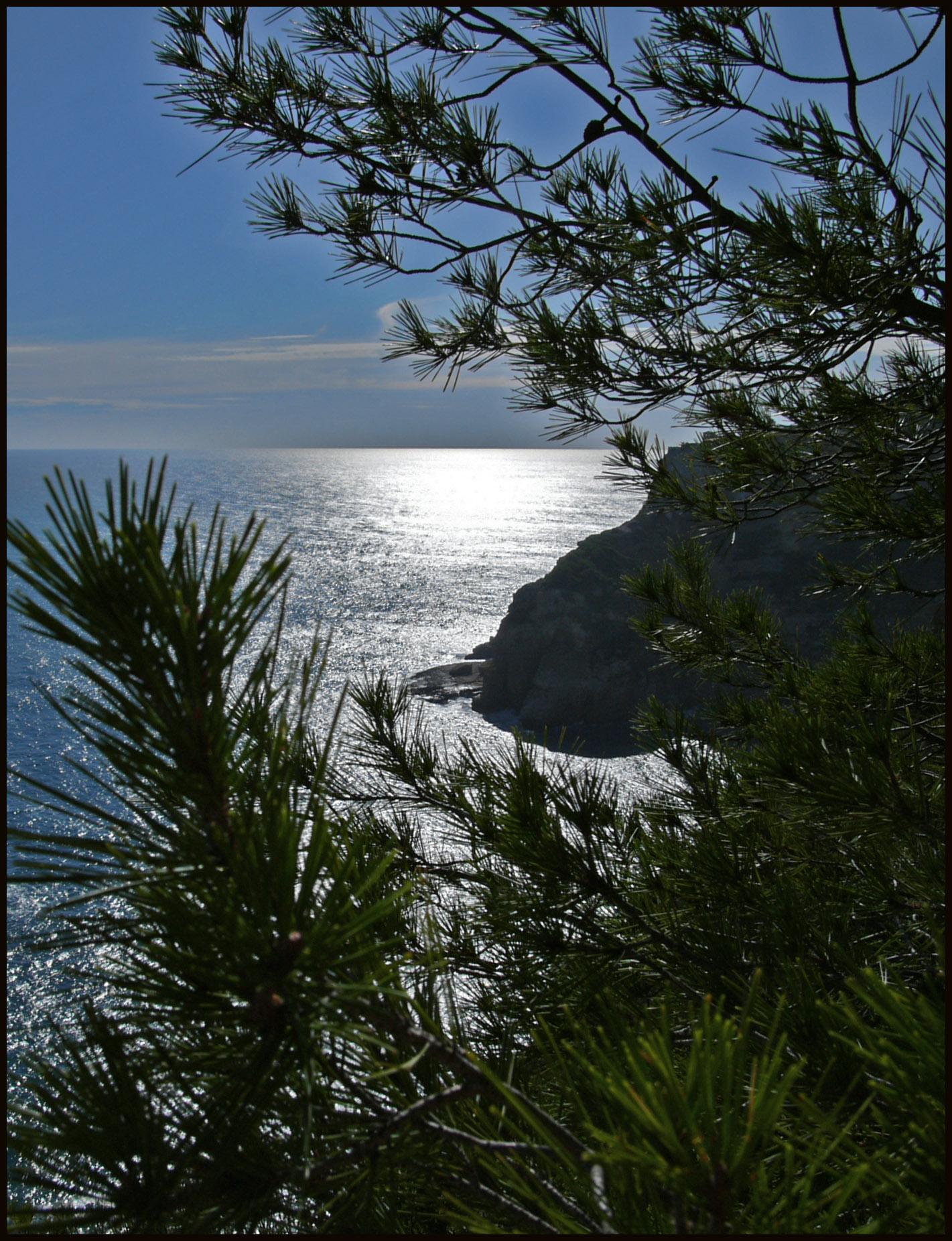 Foto playa Cala de la Barra.
