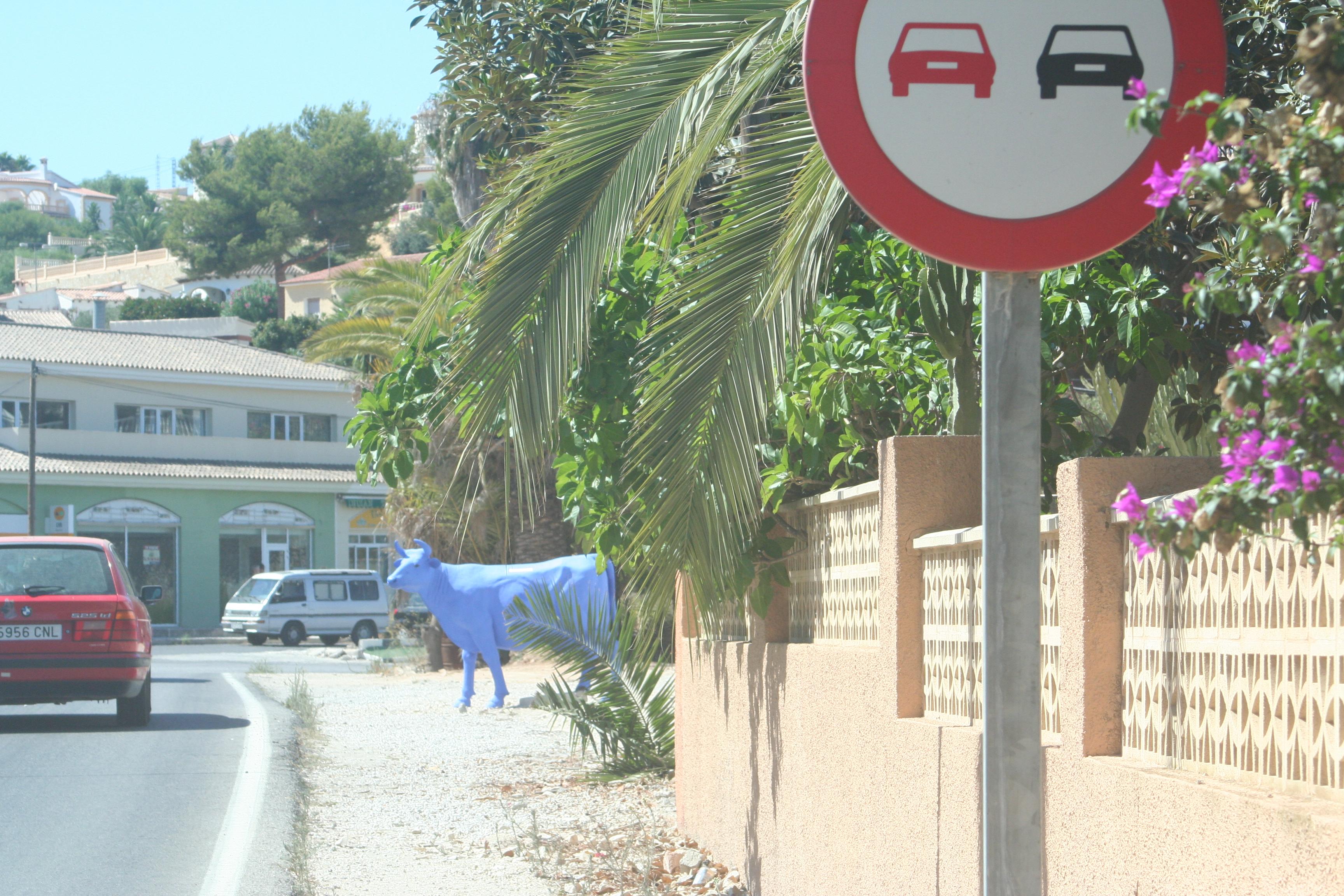 Foto playa Els Pinets.