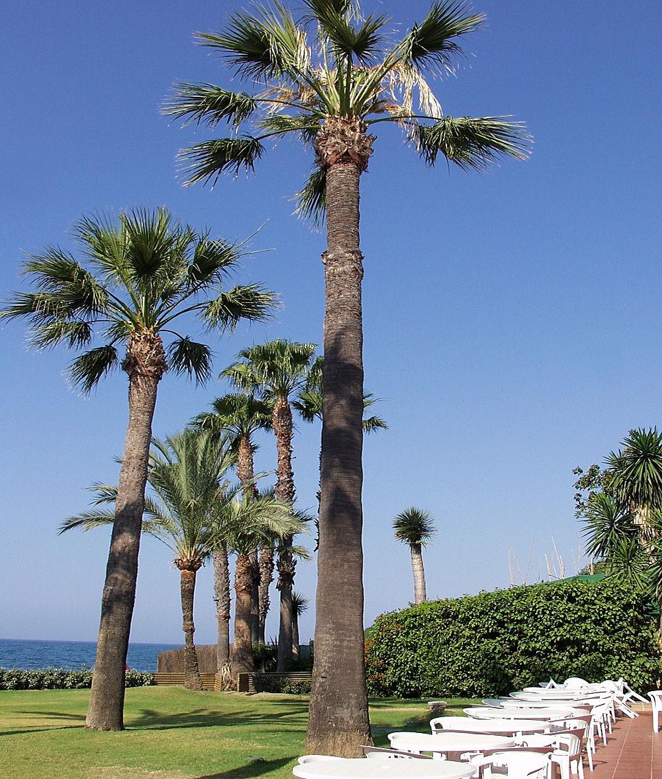 Playa Casasola / Isdabe-Atalaya / Matas Verdes