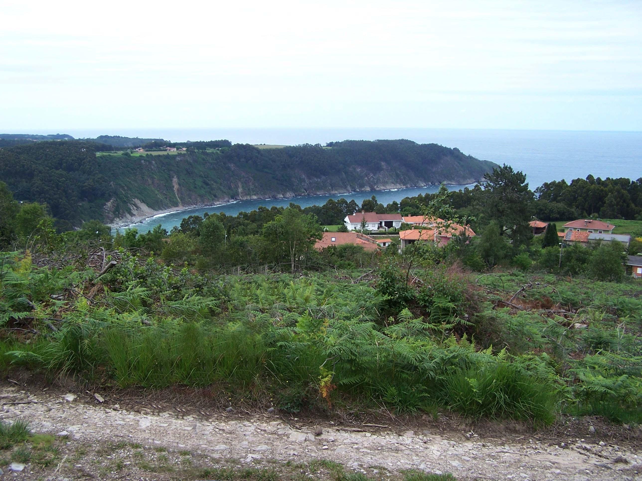 Foto playa La Olla. Vista de la Concha de Artedo