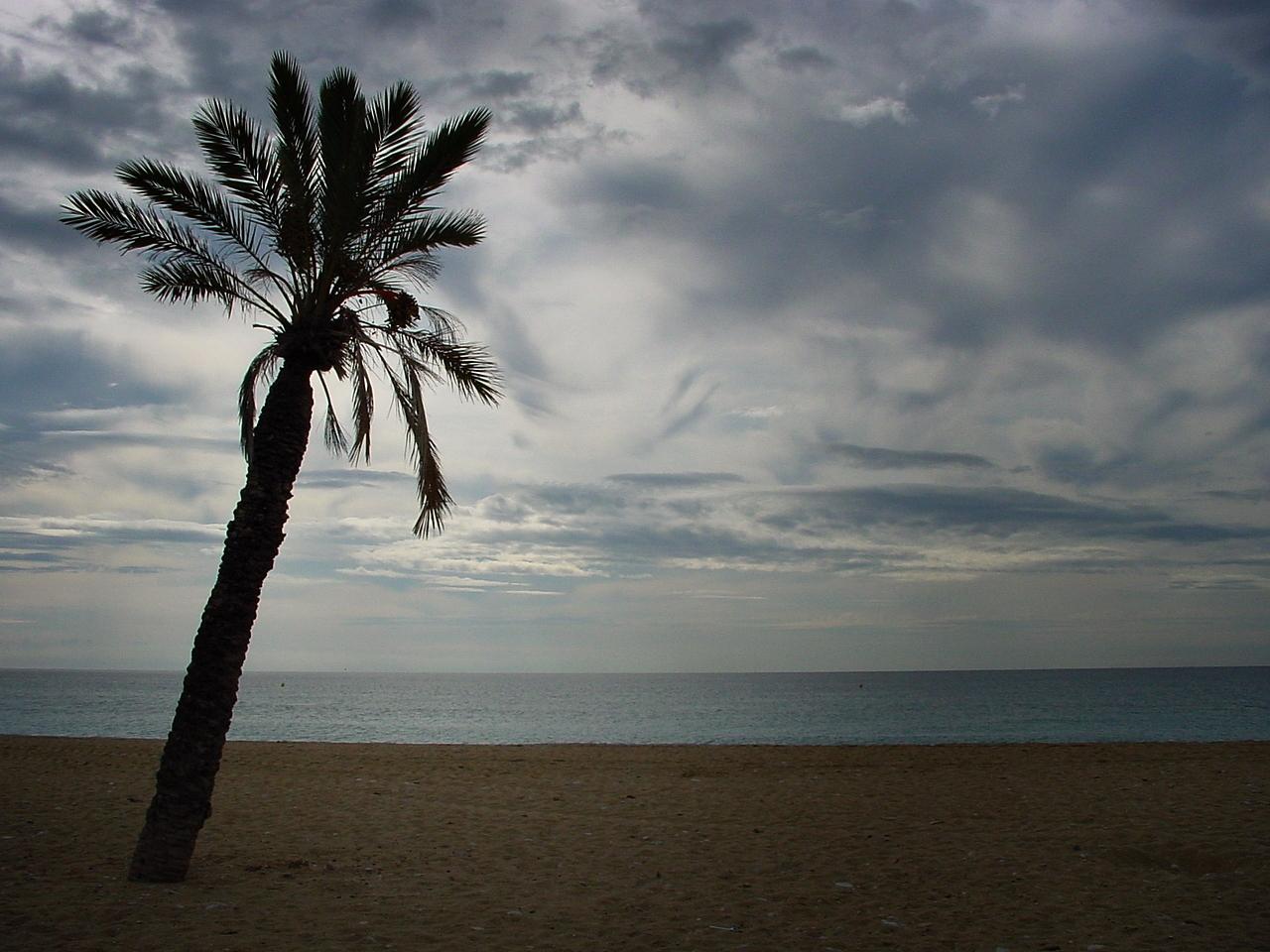 Foto playa El Bon Nou. el Paraiso