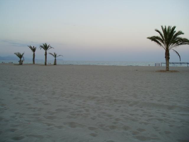 Foto playa Muchavista. Playa