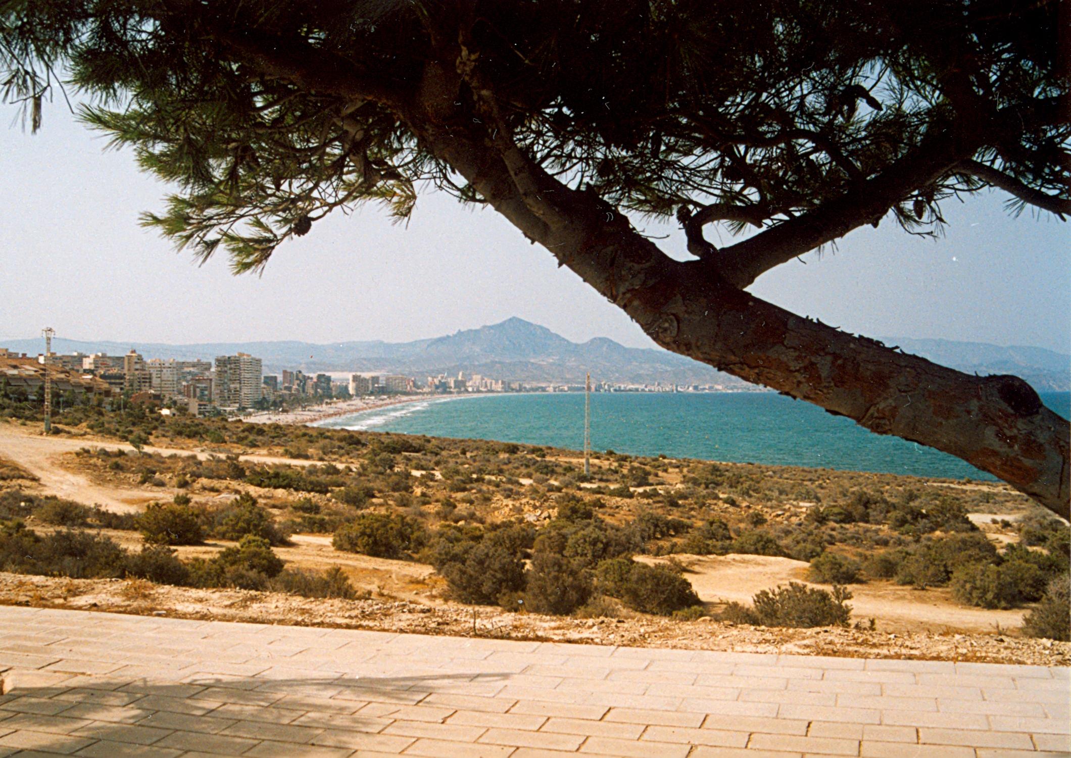 Foto playa Cala de la Palmera. Playa de San Juan desde el Cabo de las Huertas