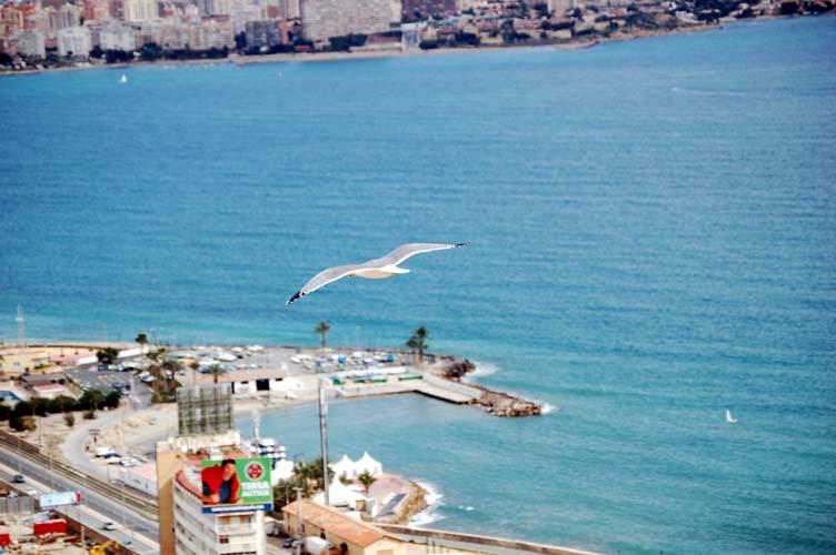 Foto playa Cala dels Jueus / Cala de los judíos. Sobre volando Alicante by G76