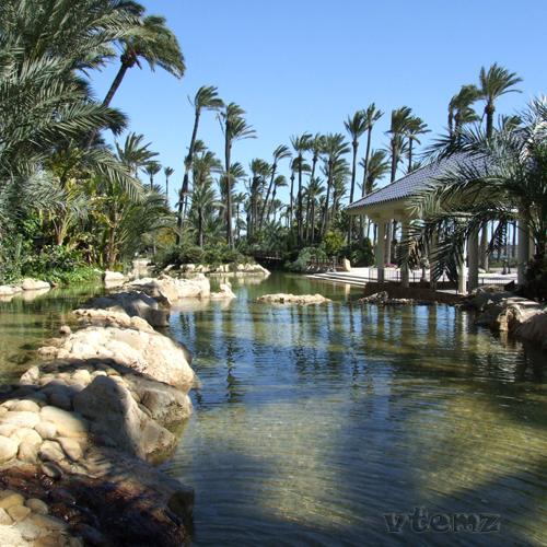 Foto playa Agua Amarga. Parque El Palmeral - Alicante (by vtemz)