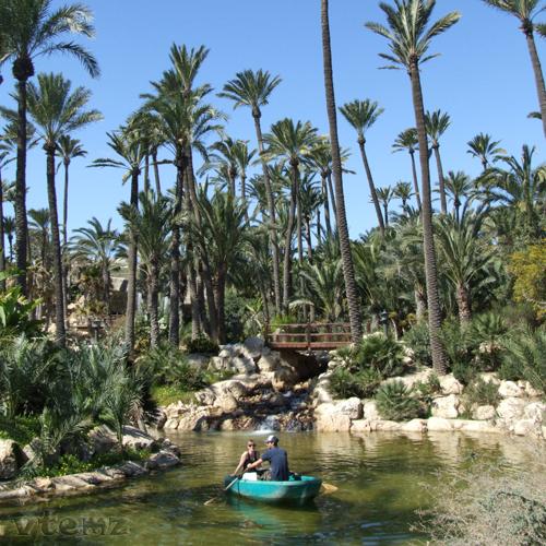 Foto playa Agua Amarga. Estanque en el Parque del Palmeral (by vtemz)