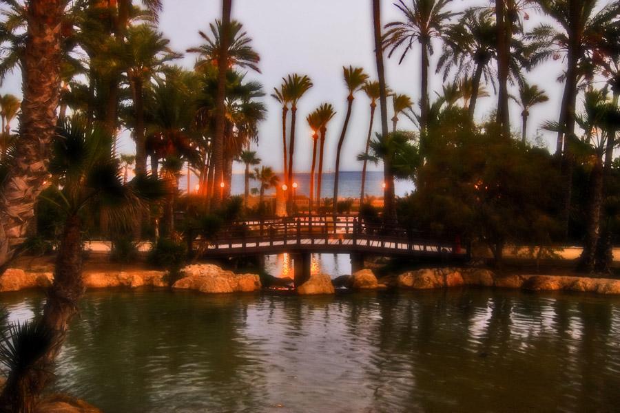 Foto playa Agua Amarga. El Palmeral