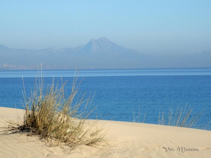 Playa Carabassi
