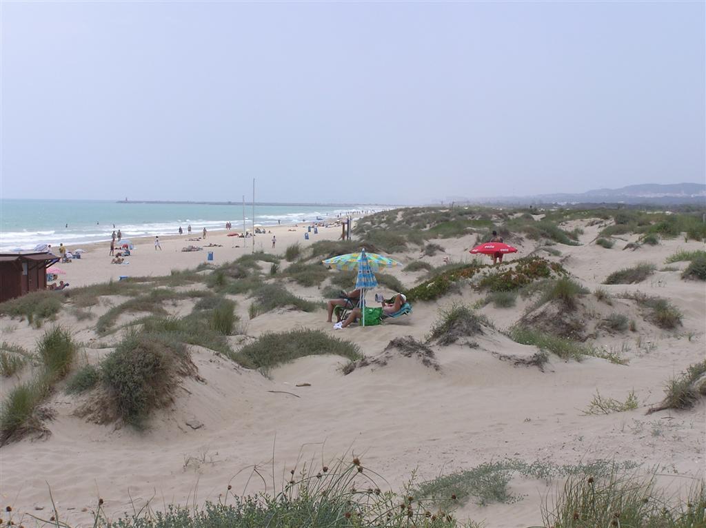 Foto playa Babilonia. View towards Guardamar del Segura