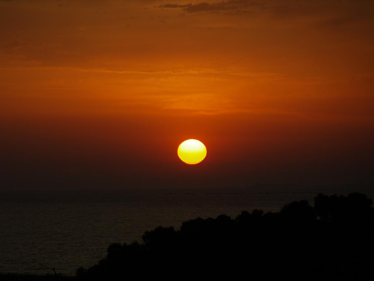 Foto playa Los Tusales. AMANECER EN EL PARQUE ALFONSO XIII GUARDAMAR DEL SEGURA,,Foto selecionada por canal 9 Valencia,Para el Orage,,,,Contest de Julio,,,,