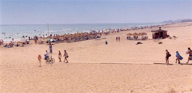 Foto playa El Campo. Playa La Roqueta Guardamar © (Foto_Seb)