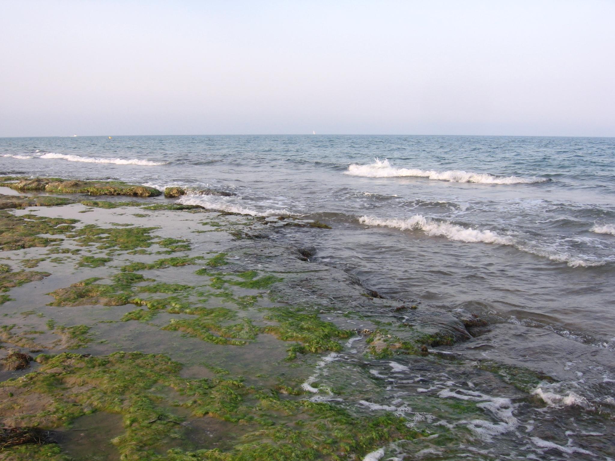 Foto playa El Campo. Playa El Moncaio Guardamar del Segura