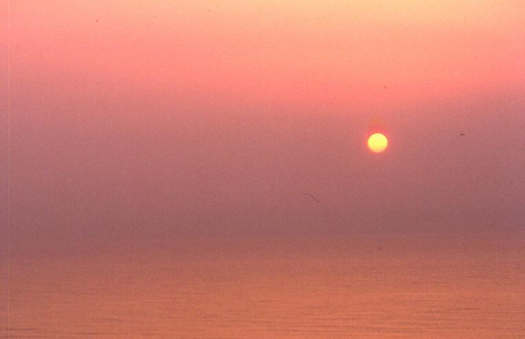 Foto playa El Campo. Mediterraneo
