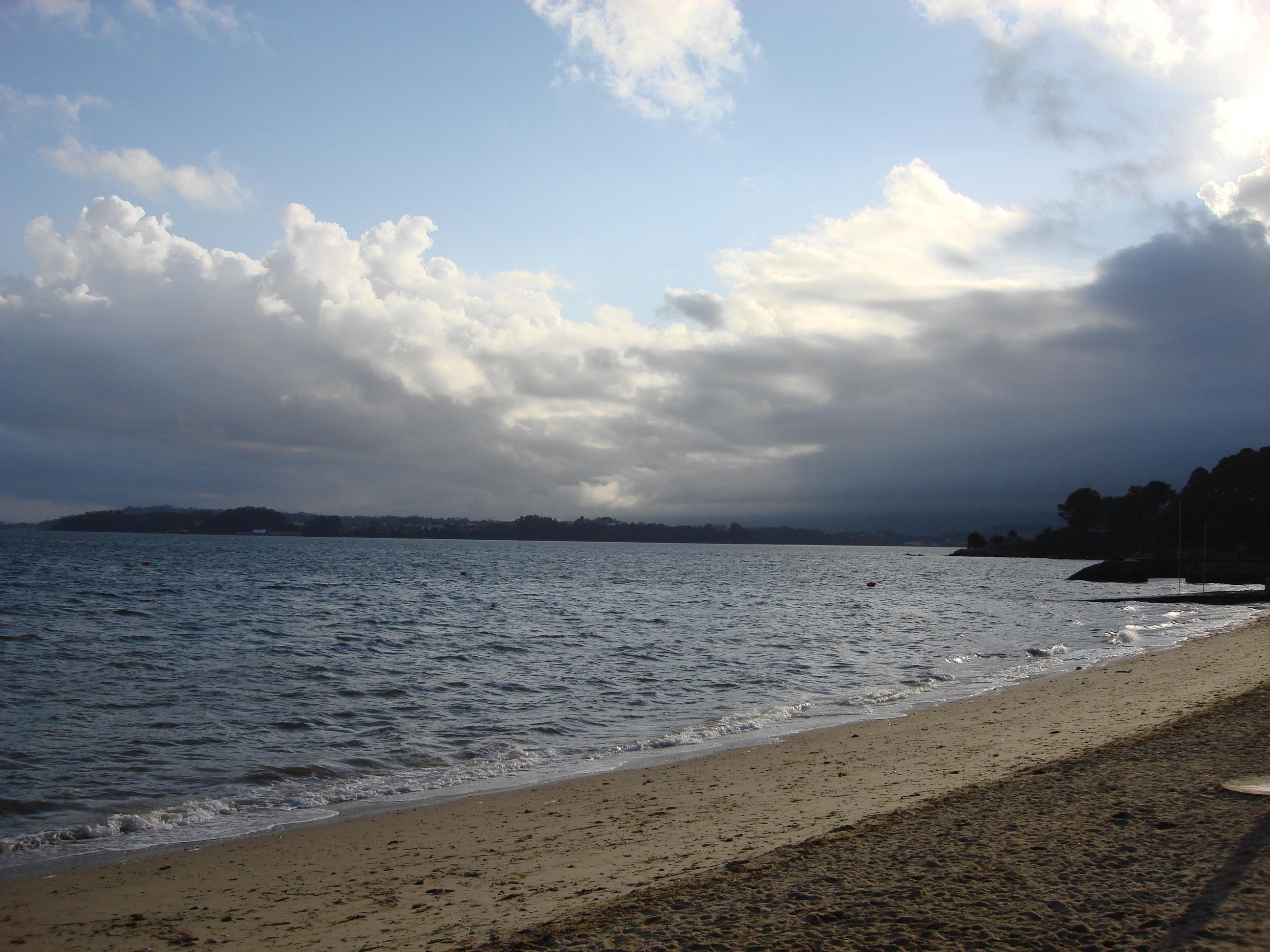 Playa Pereira Torta