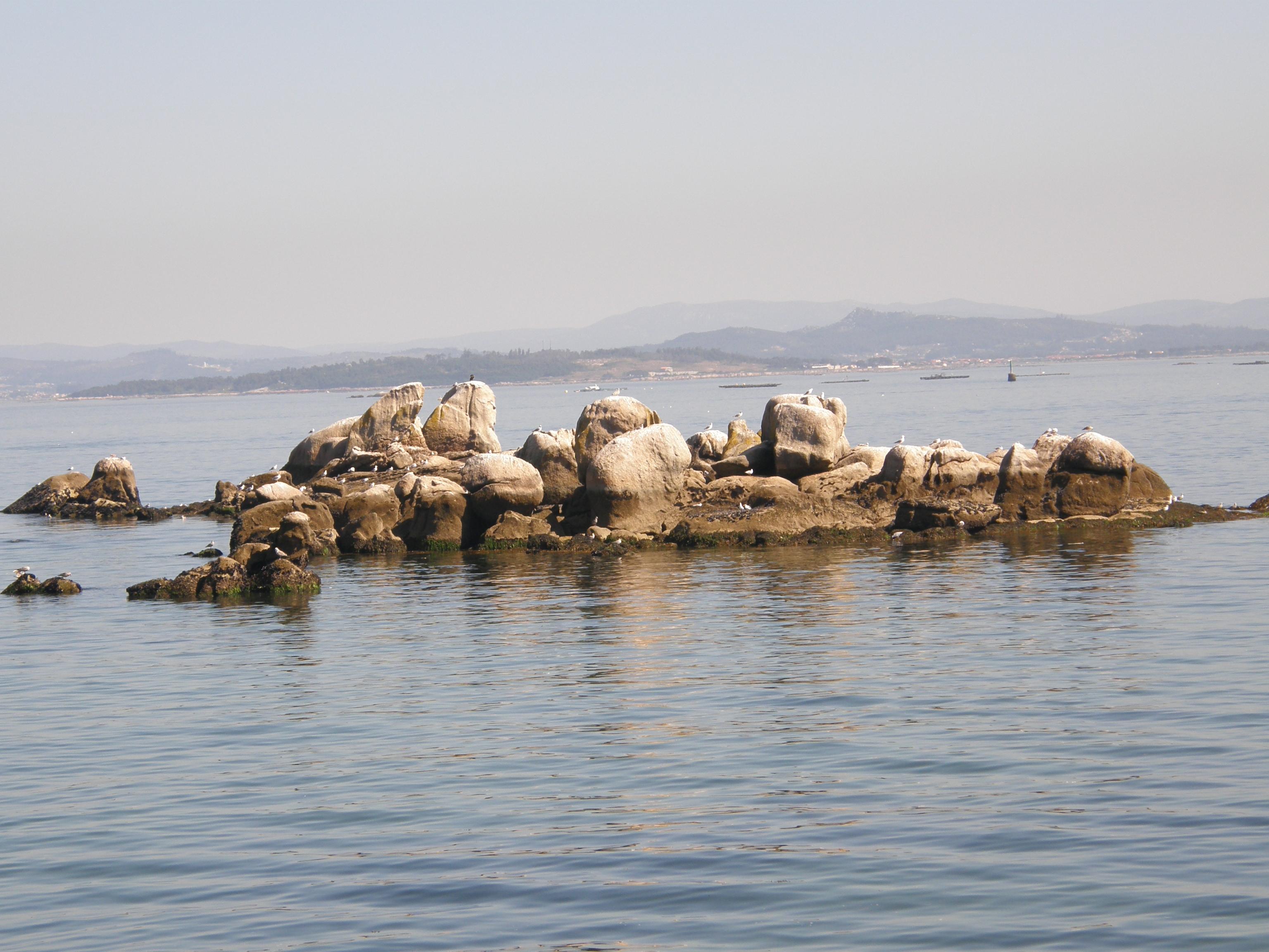 Foto playa Gavoteira de Fontan. Descanso para gaviotas