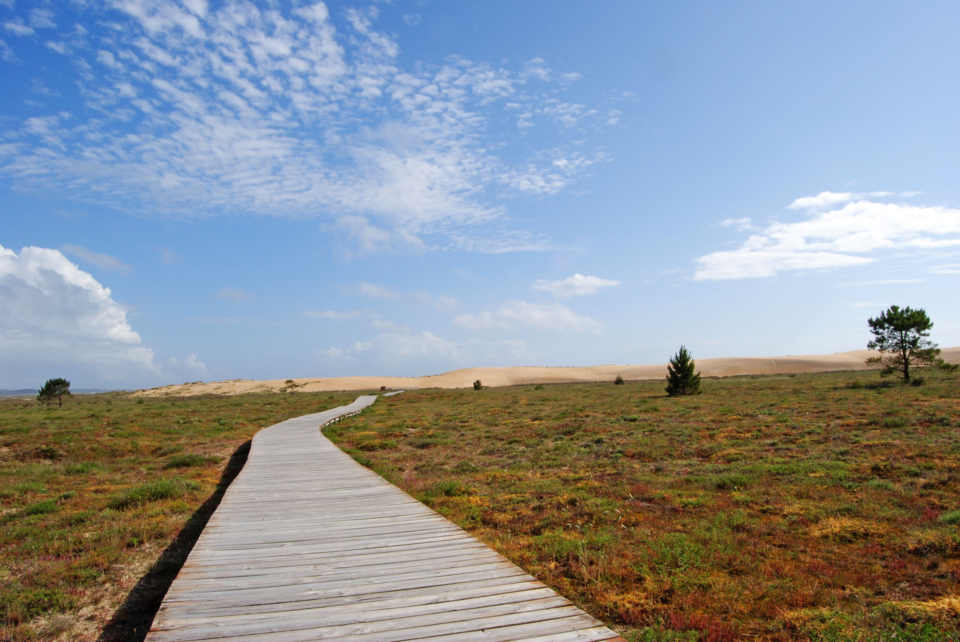 Foto playa As Furnas. Gran duna de currubedo, paseando unos metros ;))