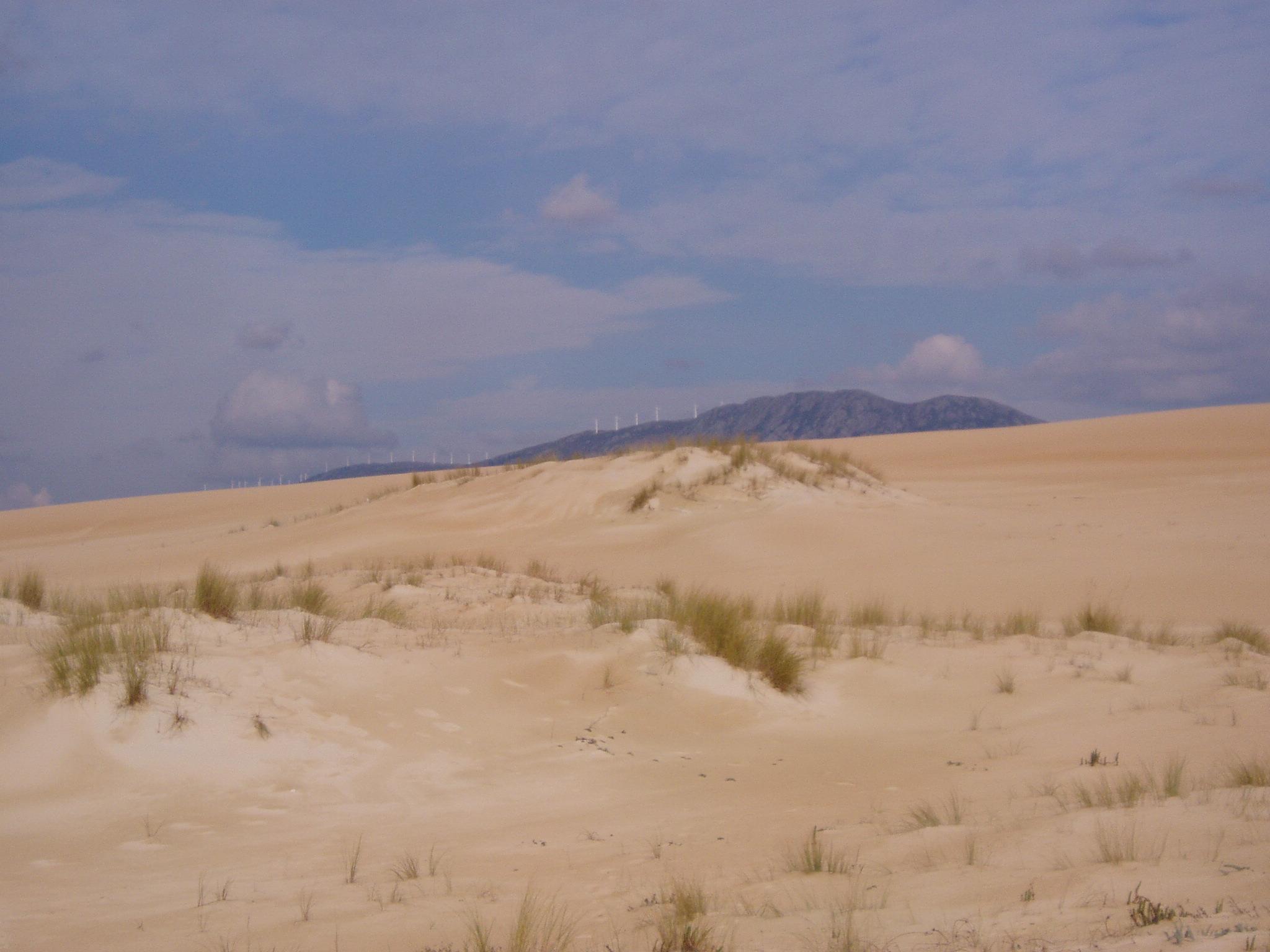 Foto playa As Furnas. Duna e A Curota o fondo