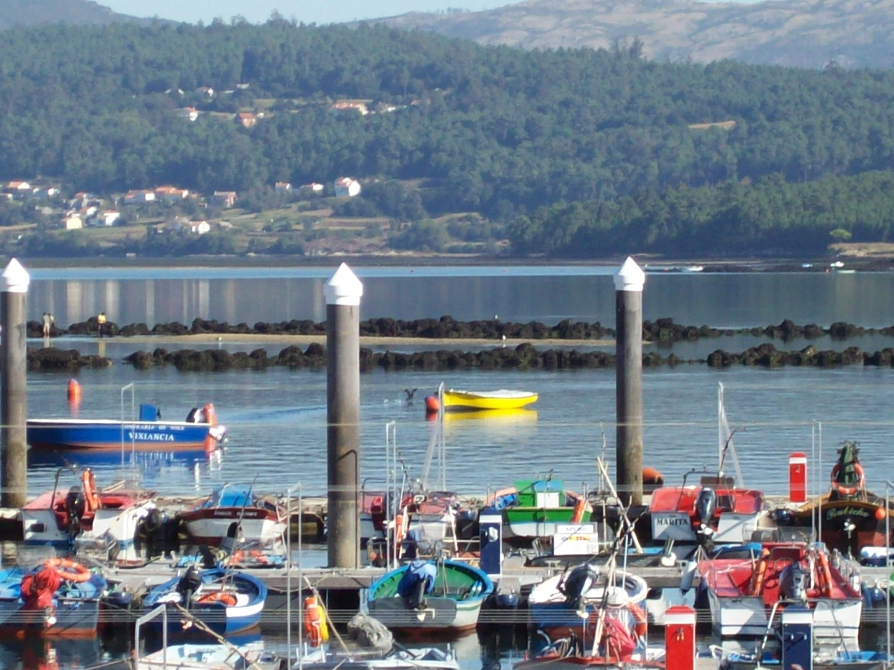 Foto playa Testal. embarcadero de testal