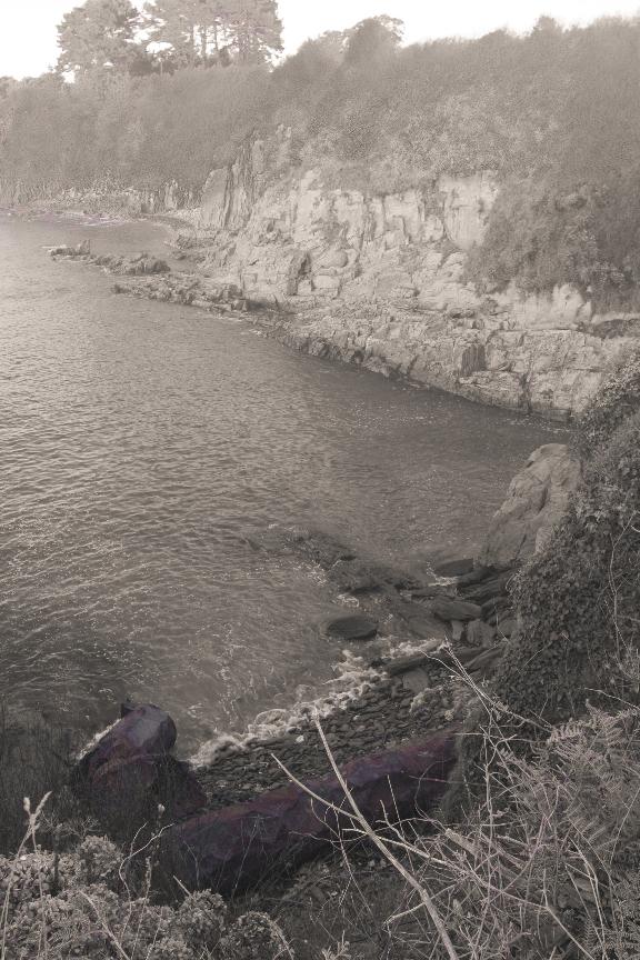 Playa Coido