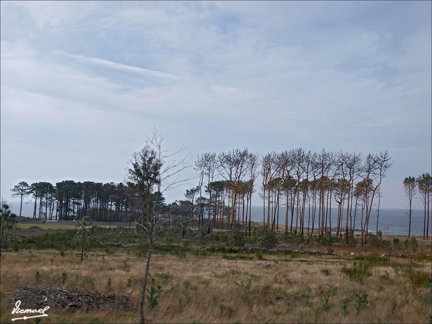 Foto playa La Prudencia / Do Castelo / Del Castillo. 080217-117 MUROS