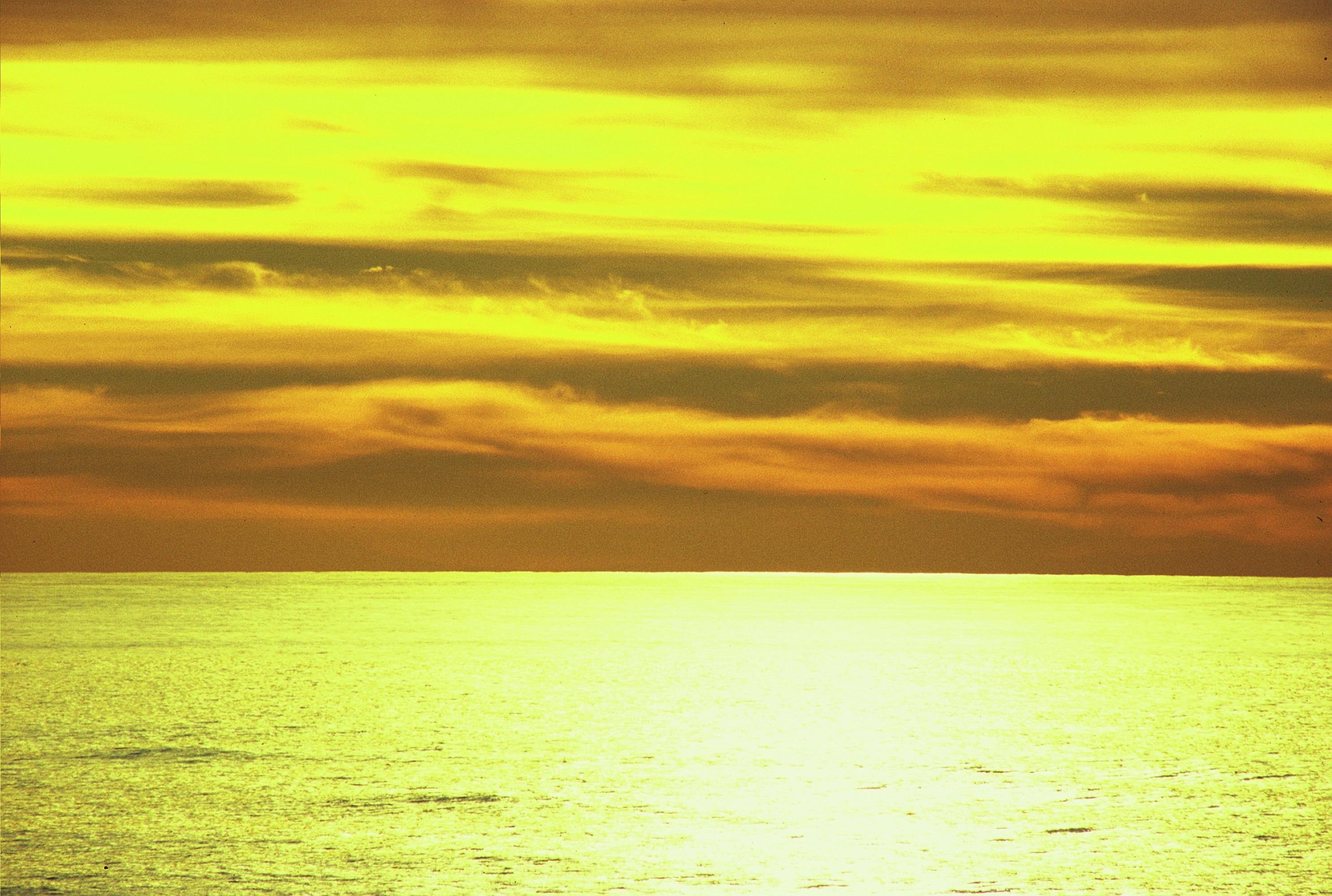 Foto playa Sureseco / Reseco. dorado Lariño