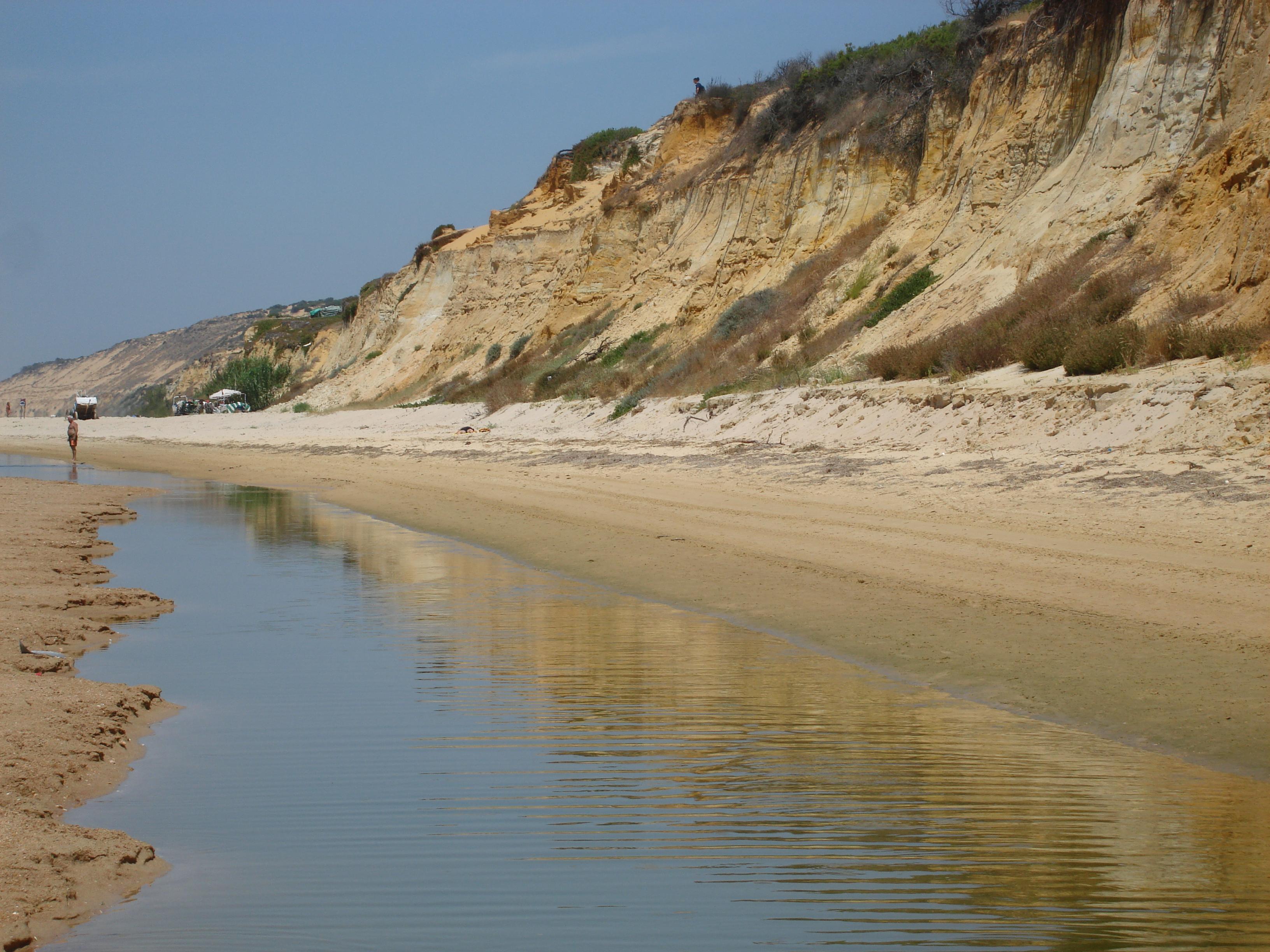 Foto playa Doñana. Duna fosil.Matalascañas.(Huelva)