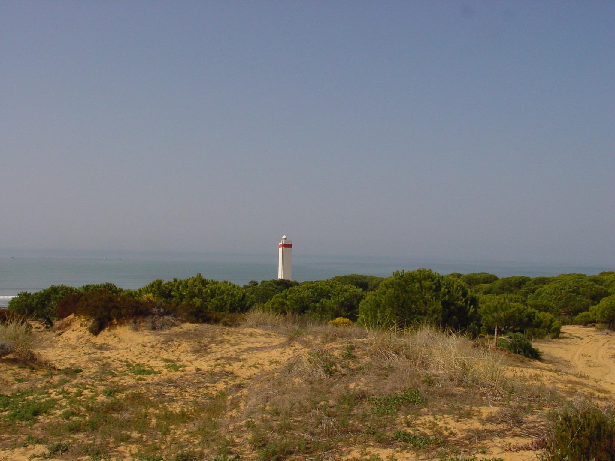 Foto playa Doñana. Vista del Faro