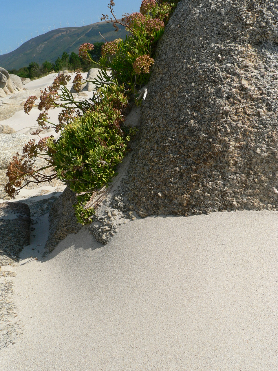 Foto playa Cons. Carnota´s White Sand