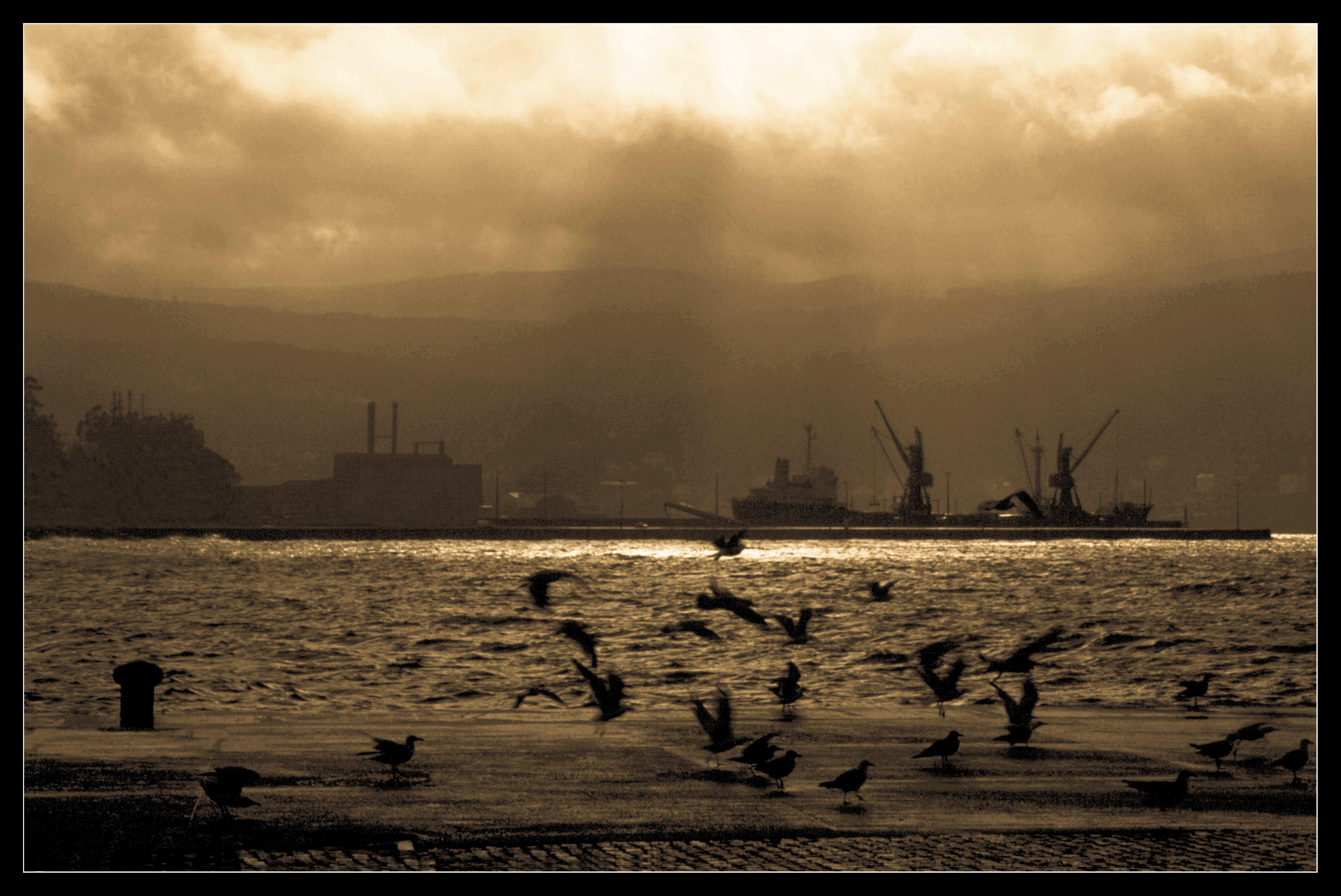Foto playa Quenxe / Corcubión. Puerto de Cee