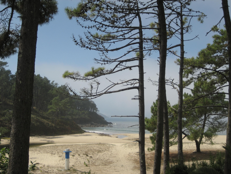 Foto playa Rego Dos Coiros. galicía - beach