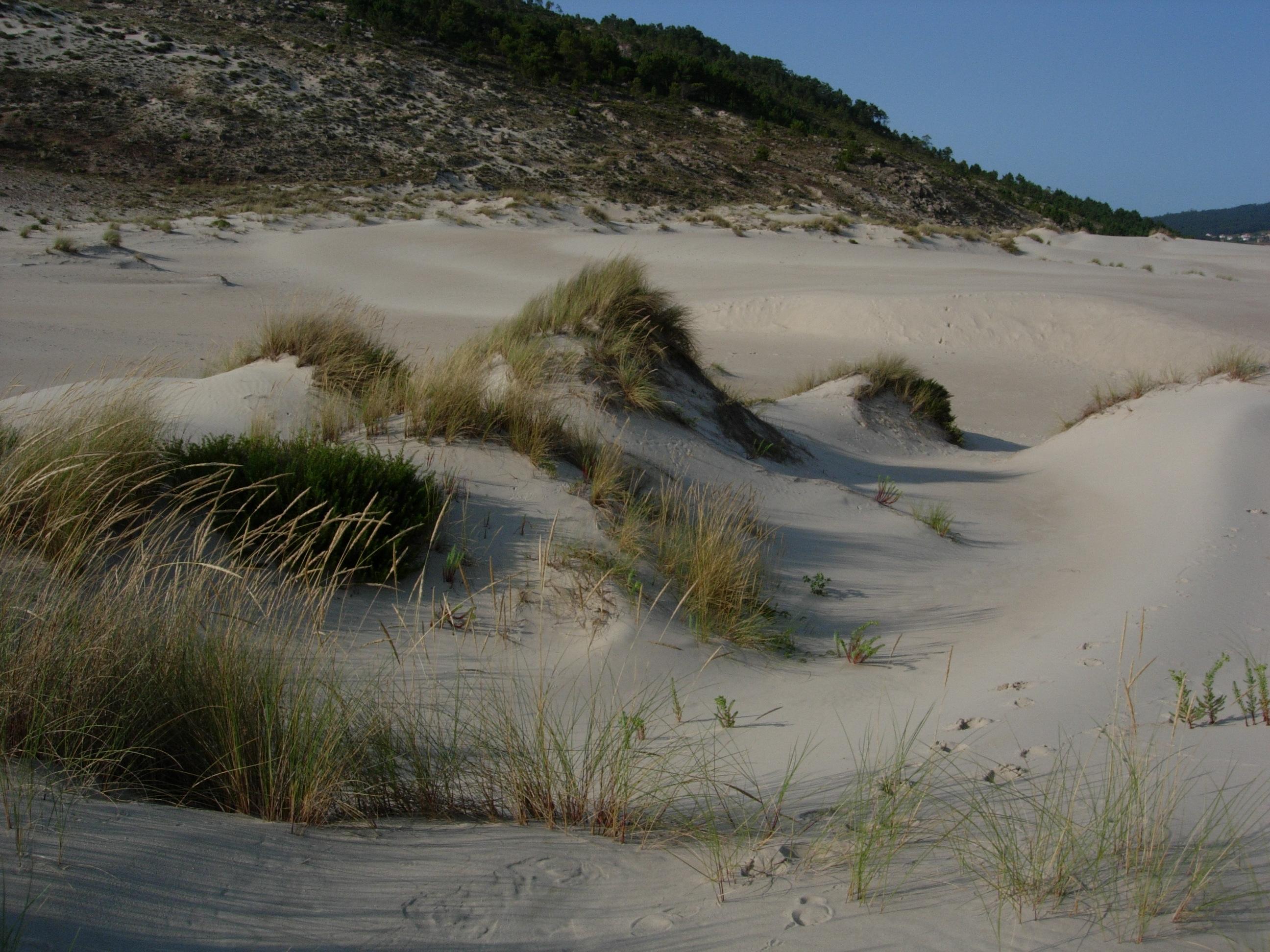 Foto playa Barra do Medio. Dunas de Monte Branco. Barra de Anllons.