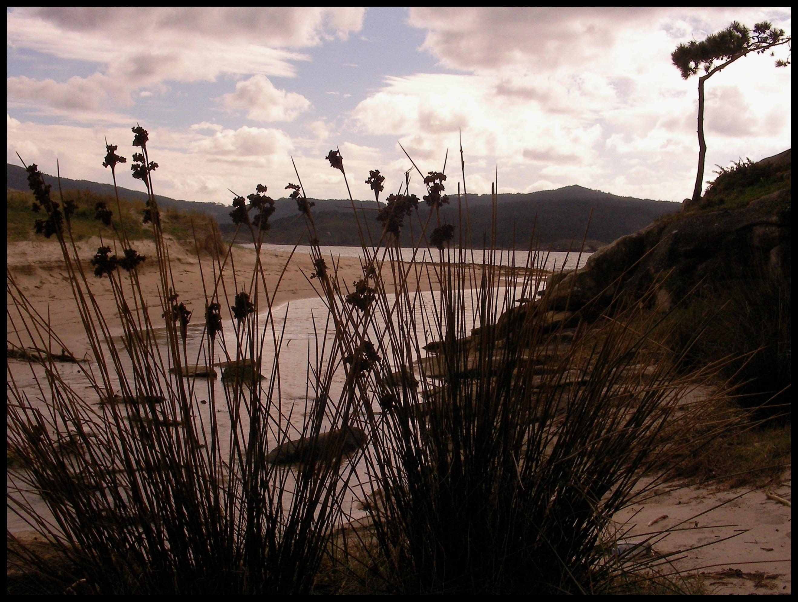Foto playa Balarés. JUGANDO AL ESCONDITEÂ¡Â¡Â¡    ♪♫