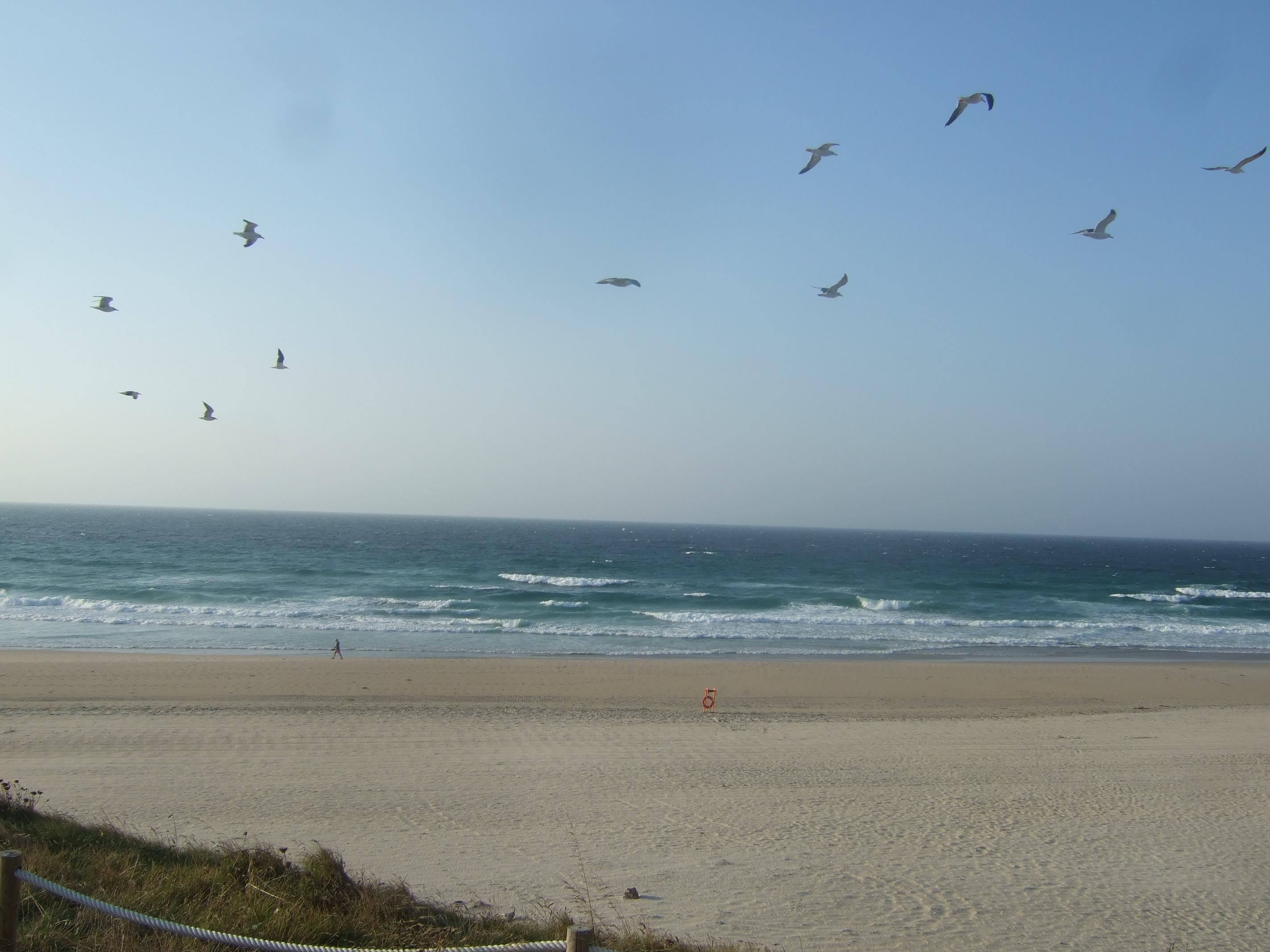 Foto playa Razo / Arnados. Playa de Razo