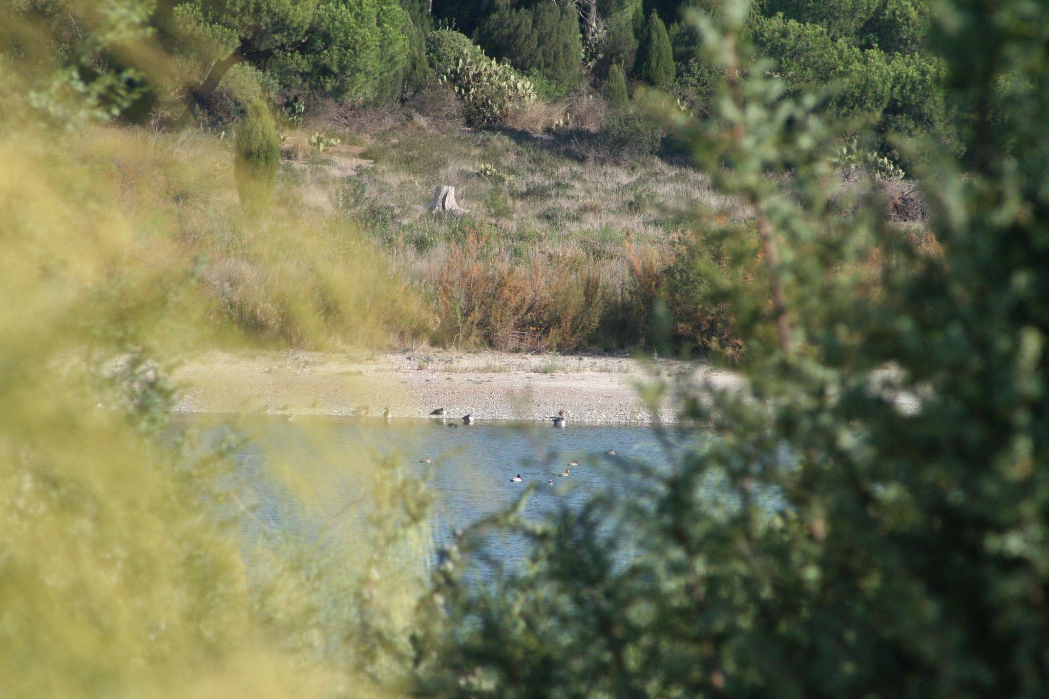 Foto playa El Portil. Laguna del Portil - 03