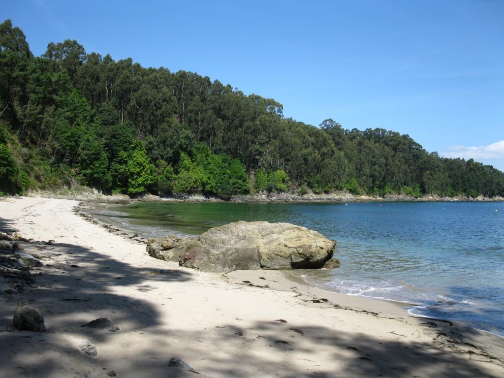 Foto playa Lobos. Praia de Arnela