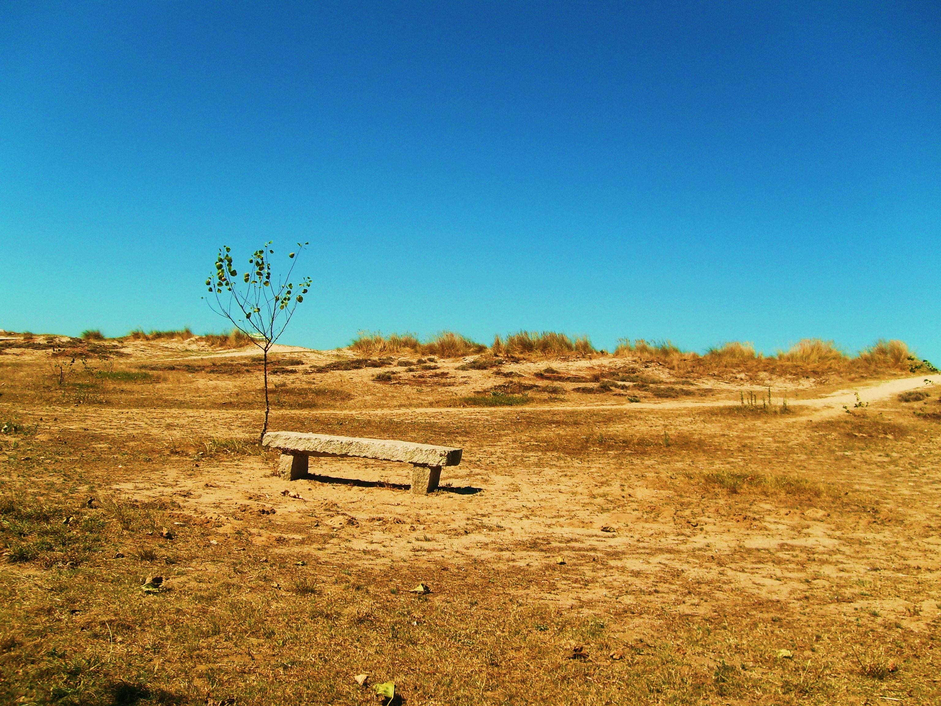 Foto playa Grande de Miño. Playa de Miño
