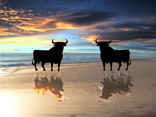 Foto playa Islantilla. toros en la playa