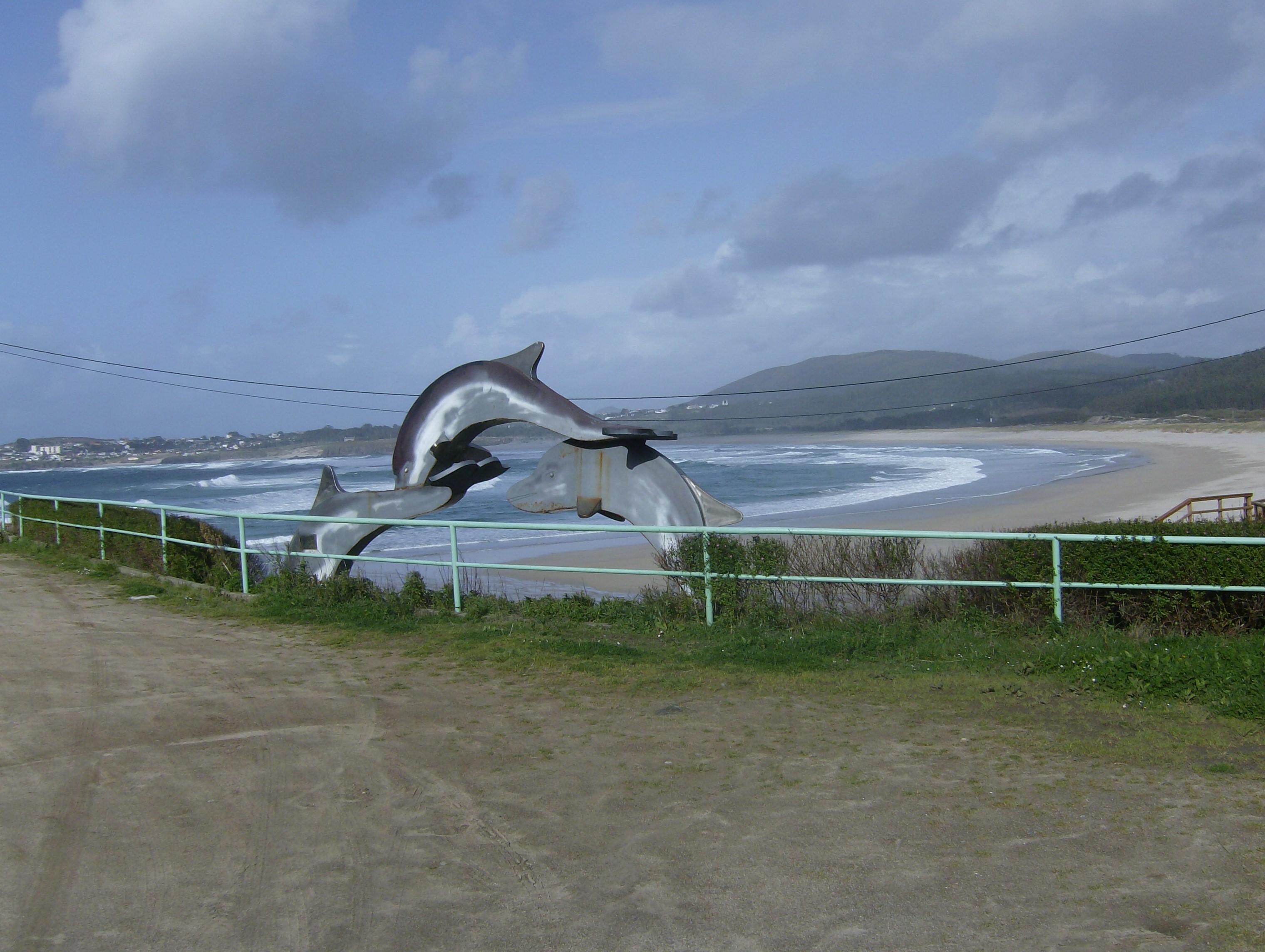 Foto playa San Xurxo / San Jorge. Delfines