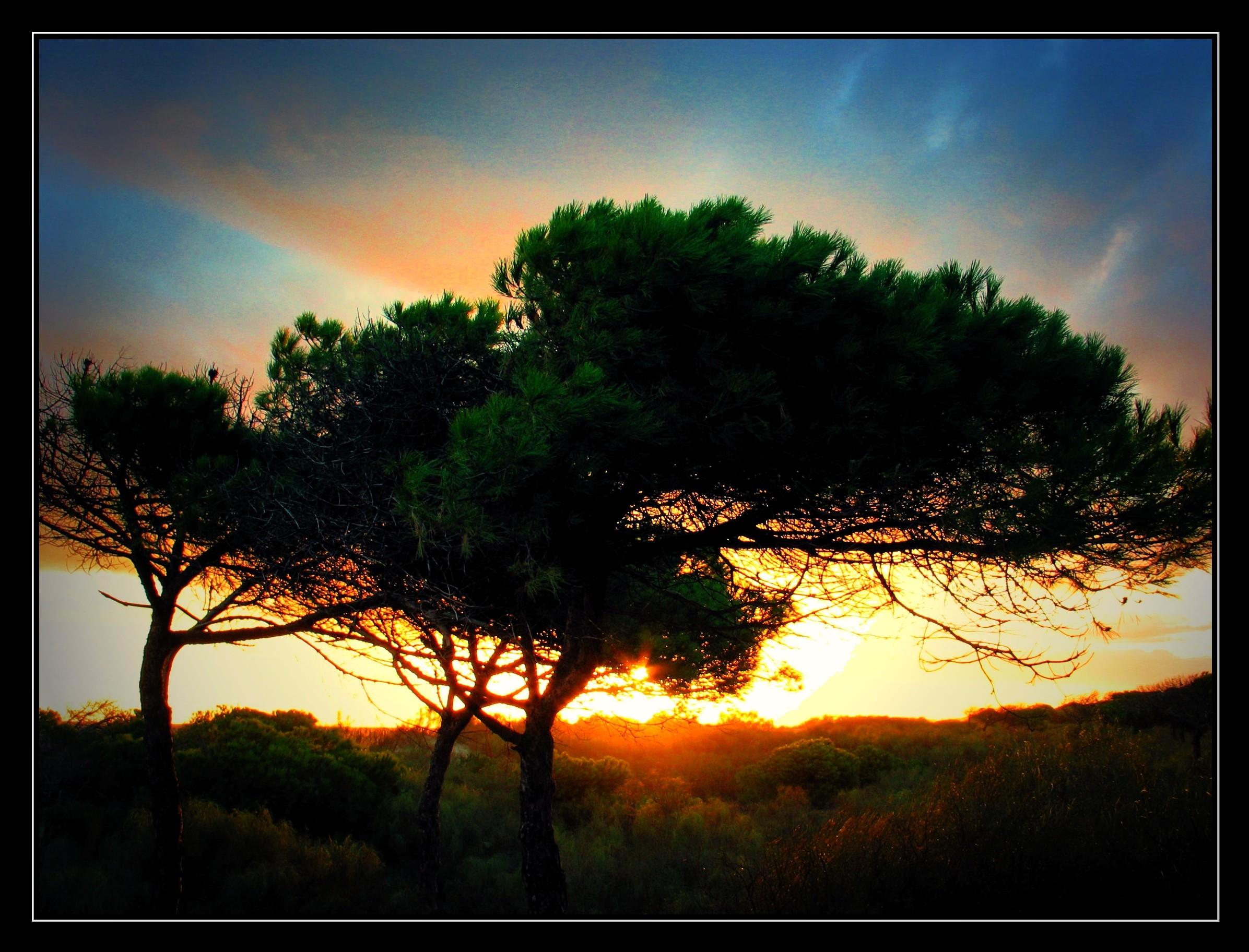 Playa Redondela / Cruce de la Redondela
