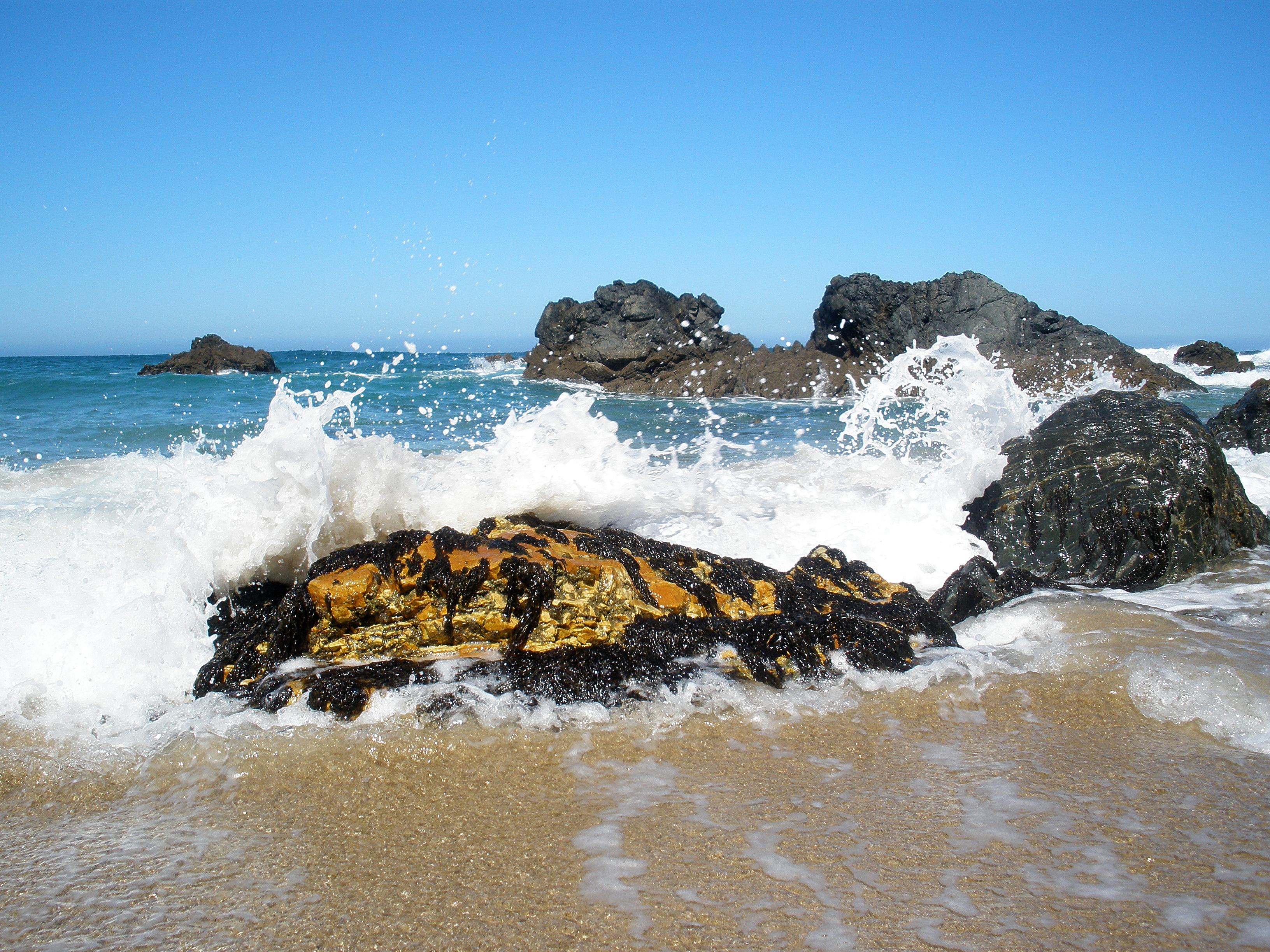 Foto playa Ponzos. Rocas con mucha vida