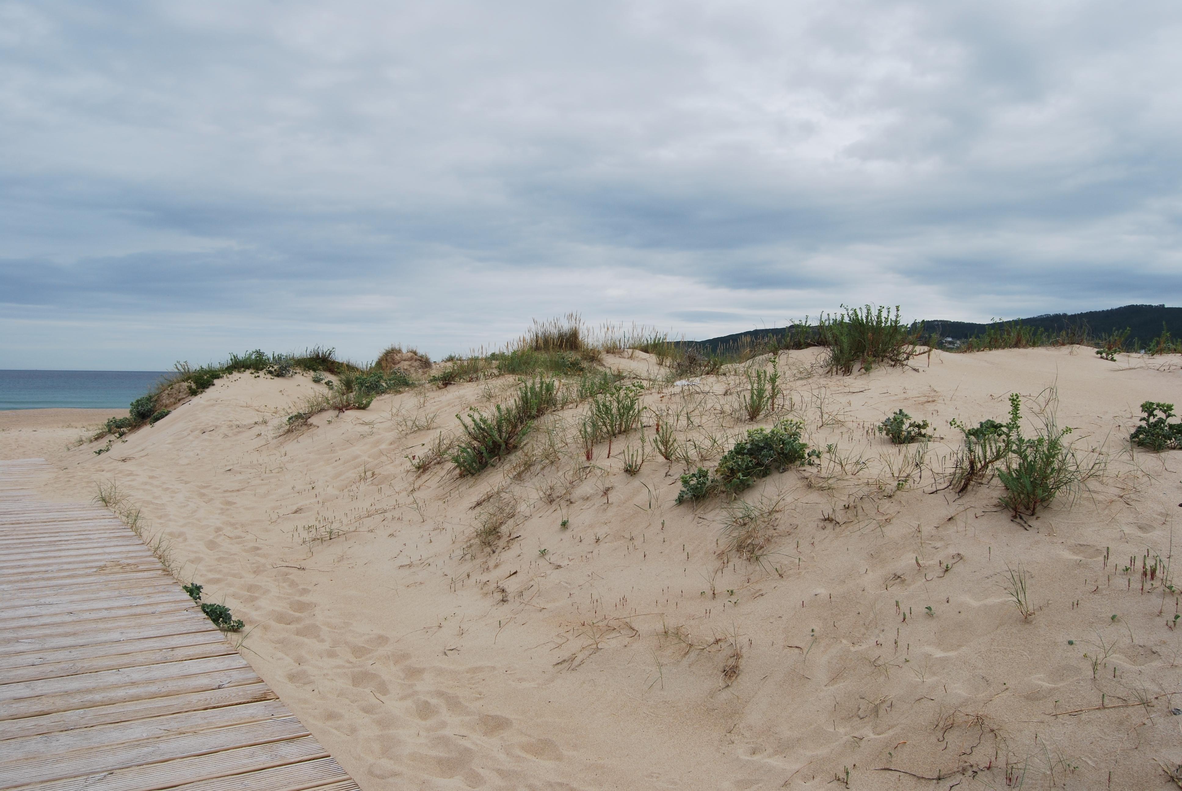 Foto playa A Frouxeira. Dunas de Praia do Valdoviño