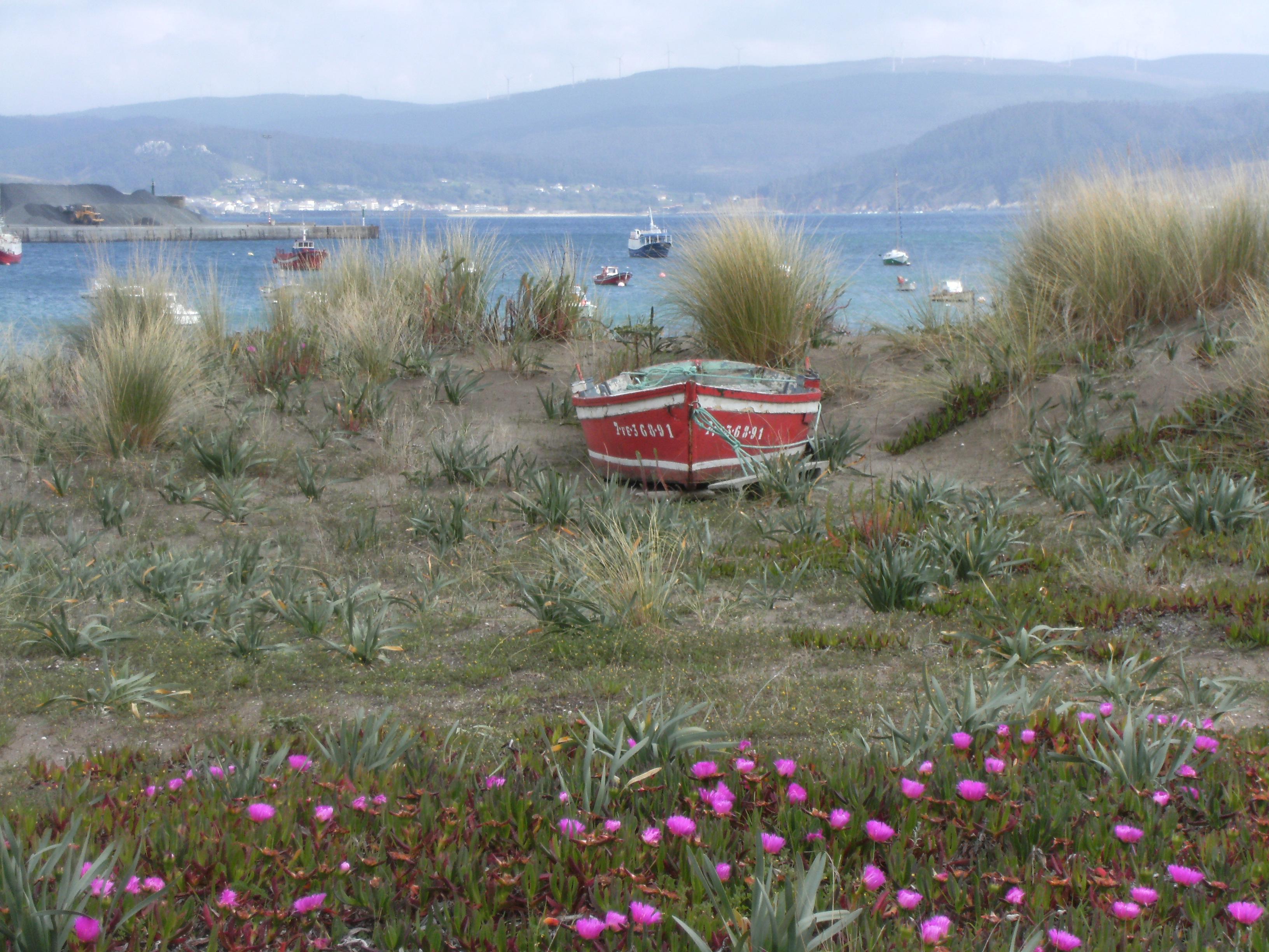 Foto playa A Concha / A Basteira / Cariño. Una