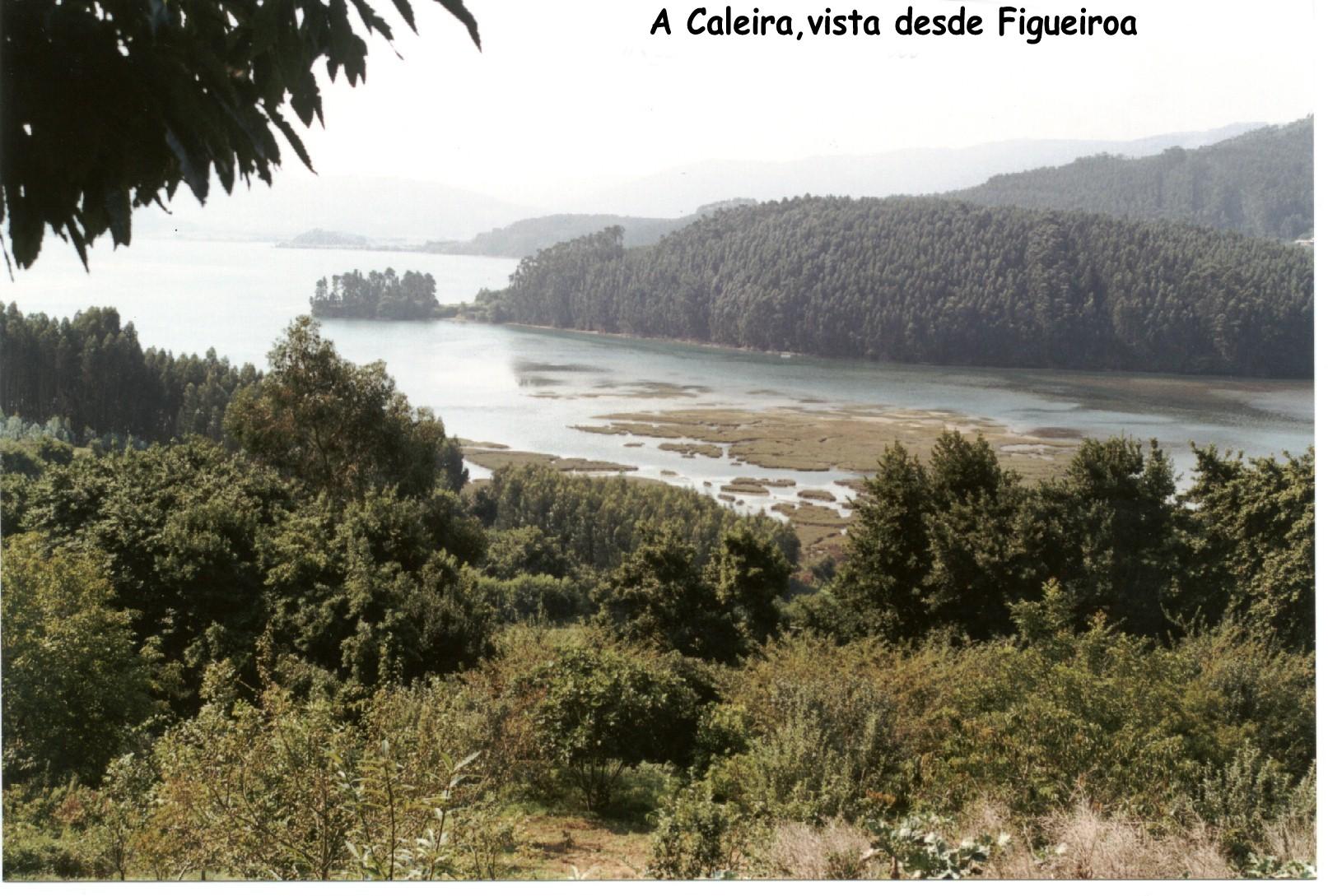 Foto playa Figueiras. A Caleira. vista desde Figueiroa