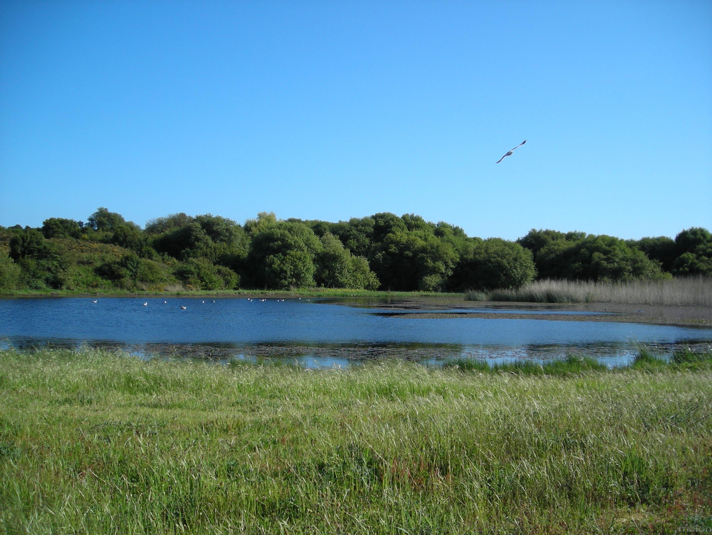 Foto playa Eiron. lagoa Bodeira