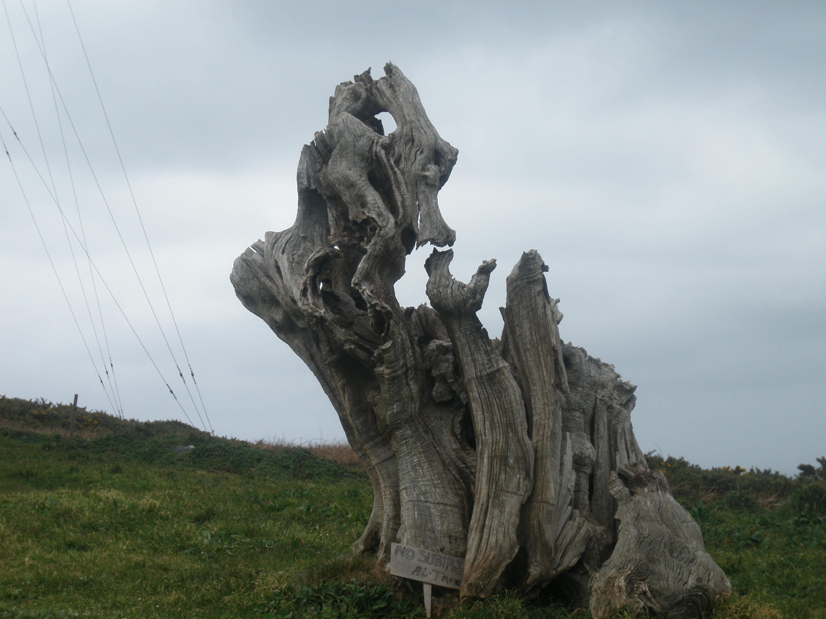 Foto playa Bares. Caprichos de la naturaleza